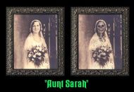 Aunt Sarah Changing Portrait - (Earn 1 reward points on this item worth $0.25)