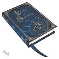 Embossed Book of Shadows A7 Journal