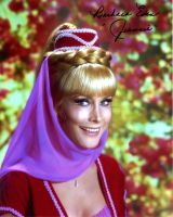Barbara Eden from the TV series I DREAM OF JEANNIE